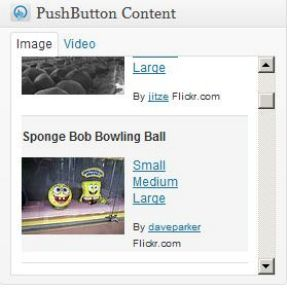 Push Button SEO Videos